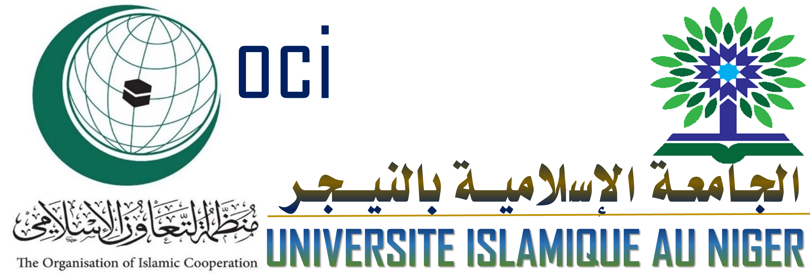 universite Islamique au Niger